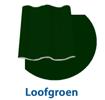 dakcoating-loofgroen